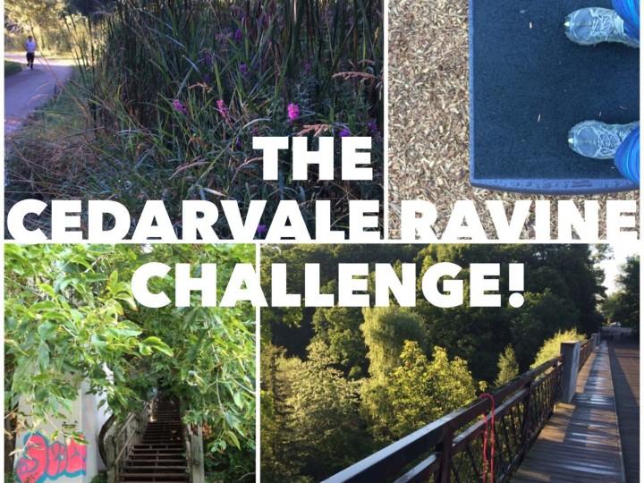 The Cedarvale Ravine Challenge